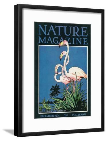 Nature Magazine - View of a Pair of Flamingos, c.1931-Lantern Press-Framed Art Print