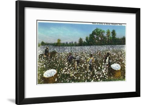 Memphis, Tennessee - View of a Field of Cotton in Bloom, Cotton Workers, c.1942-Lantern Press-Framed Art Print
