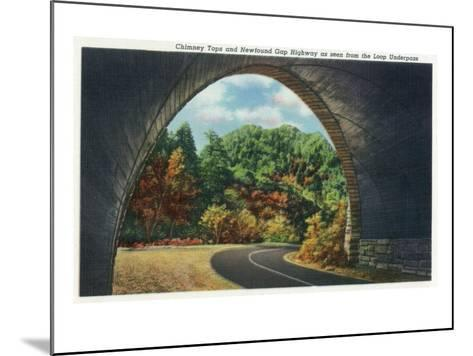 Great Smoky Mts. Nat'l Park, Tn - Autumn Scene from the Newfound Gay Hwy Loop Underpass, c.1940-Lantern Press-Mounted Art Print