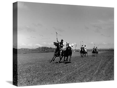 Polo Game in Progress at the Canlubang Sugarcane Plantation-Carl Mydans-Stretched Canvas Print