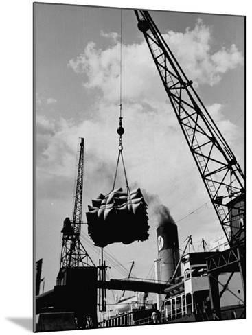 Loading Coffee on a Ship of the American Line, Mccormick--Mounted Photographic Print