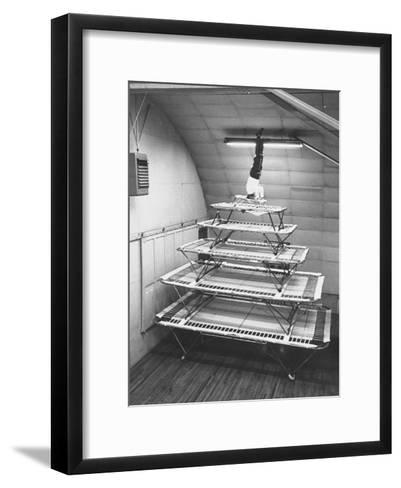 Six Sizes of Trampolines Manufactured by Nissen Trampoline Co--Framed Art Print