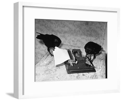 Raven Typing His Own Name of on the Typewriter-Peter Stackpole-Framed Art Print