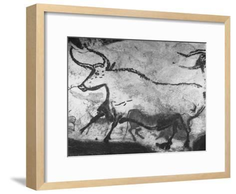 Prehistoric Cave Painting of an Animal-Ralph Morse-Framed Art Print