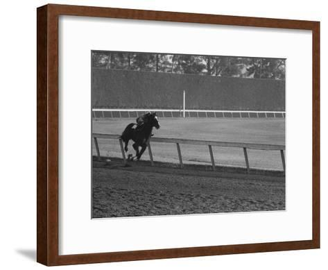 Horse Ridan During Race--Framed Art Print