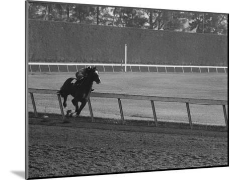 Horse Ridan During Race--Mounted Photographic Print