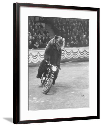 Extraordinarily Skillful Russian Performing Bear Driving a Motorcycle-Carl Mydans-Framed Art Print