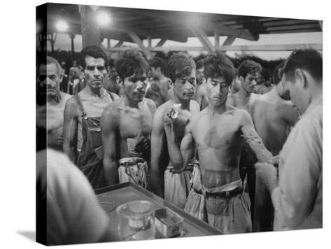 """Mexican """"Braceros"""" Being Examined at Reception Center before Being Put to Work--Stretched Canvas Print"""