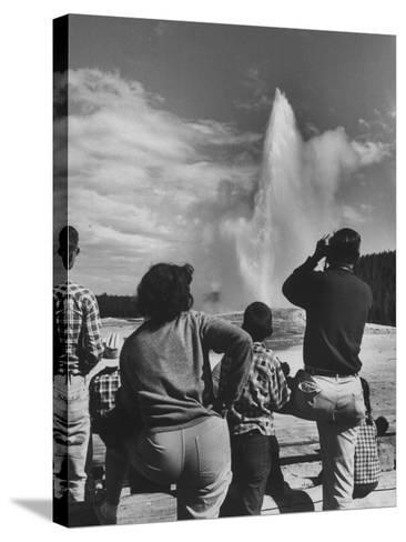 Old Faithful in Yellowstone National Park--Stretched Canvas Print