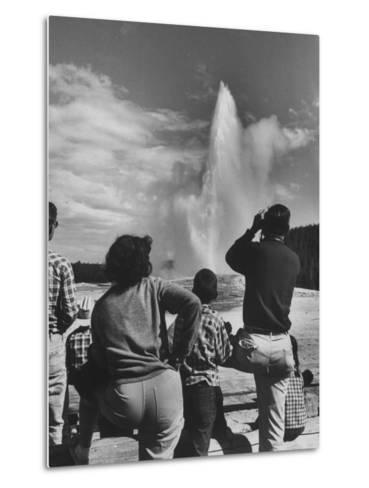 Old Faithful in Yellowstone National Park--Metal Print