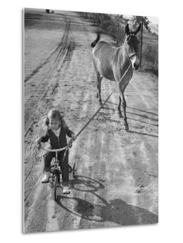 Little Girl Riding Her Tricycle, Leading Francis the Mule-Allan Grant-Metal Print