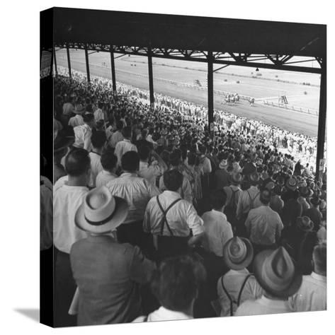 People Watching Horse Racing--Stretched Canvas Print