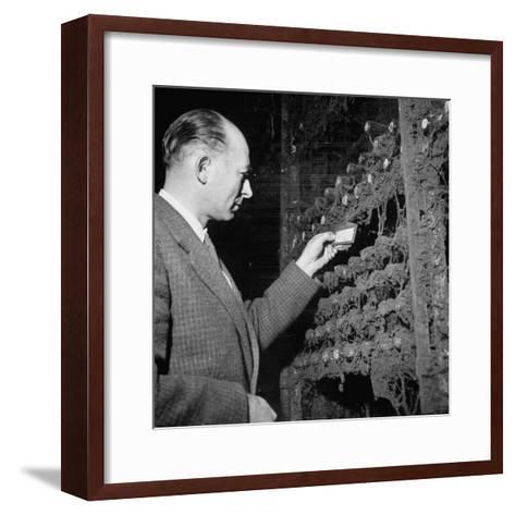 Director Yoes Kressmann, Looking at the Chateau Lafite Kept for His Own Personal Consumption--Framed Art Print