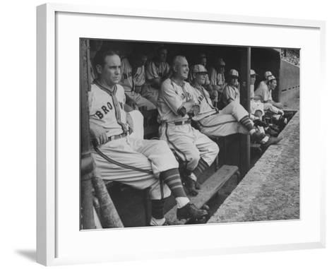 St. Louis Browns Players Sitting in the Dug Out During a Game-Peter Stackpole-Framed Art Print
