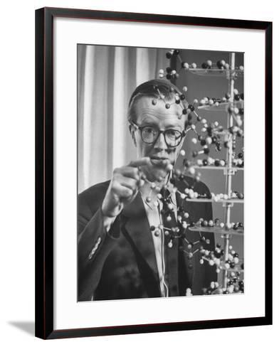 Dr. Maurice H.F. Wilkins Nobel Prize Winner with Model of Dna Molecule for Which He Received Prize--Framed Art Print