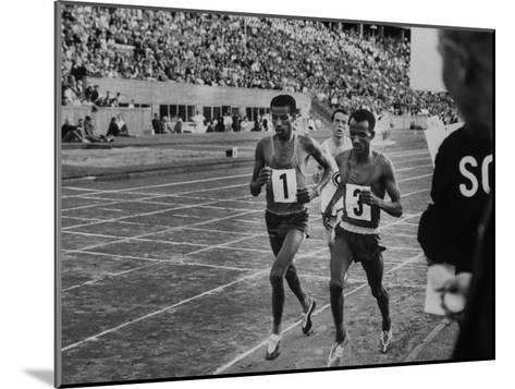 Abebe Bikila and Mamo Wolde in Exhibition Race at Berlin Olympic Stadium--Mounted Premium Photographic Print