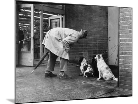 French Actor Jacques Tati Talking to a Couple of Dogs-Yale Joel-Mounted Premium Photographic Print