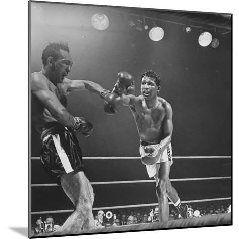 Boxers Ray Robinson and Carmen Basilio Fighting in the Ring-George Silk-Mounted Premium Photographic Print