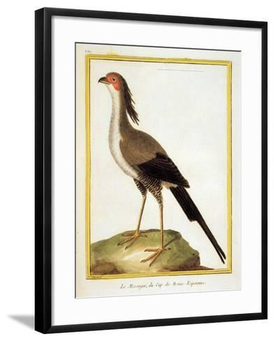 Color Lithographs with African Animals-Vincent van Gogh-Framed Art Print