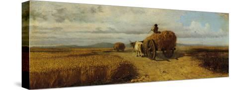 Wheat Field--Stretched Canvas Print