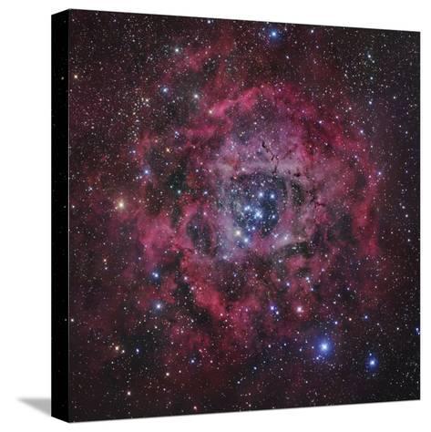 The Rosette Nebula in Monoceros-Robert Gendler-Stretched Canvas Print
