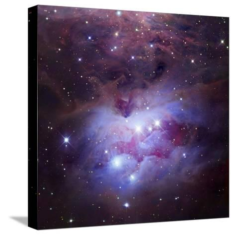 Ngc 1973-75-77, Complex Nebula in Orion-Robert Gendler-Stretched Canvas Print