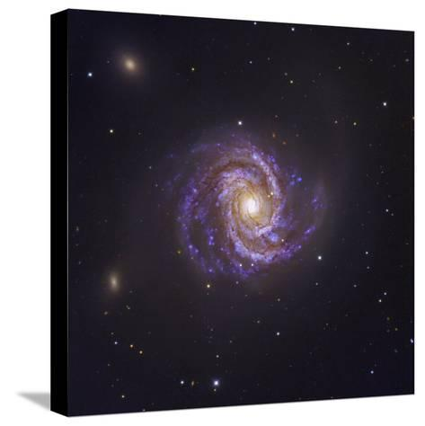 The Spiral Galaxy M100 and Supernova Sn2006X-Robert Gendler-Stretched Canvas Print