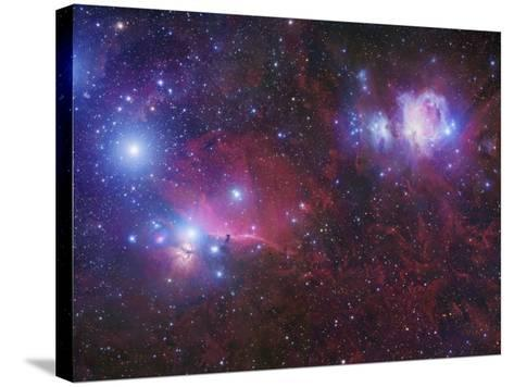 The Orion Deepfield Region, Showing the Orion Molecular Cloud and the Orion Ob1 Association-Robert Gendler-Stretched Canvas Print