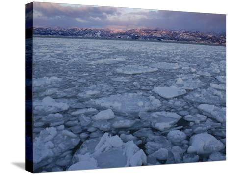 Winter Sea Ice Off Hokkaido Island, Japan-Tom Walker-Stretched Canvas Print