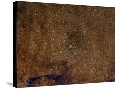 Open Cluster M7 in Scorpius-Robert Gendler-Stretched Canvas Print
