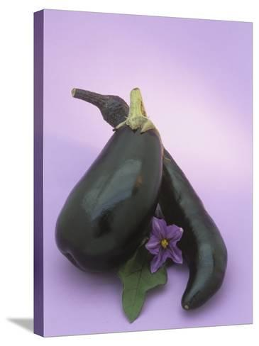 Eggplants and their Leaf and Flower (Solanum Melongena)-Wally Eberhart-Stretched Canvas Print