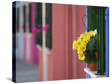 Flowerpot on Window Ledge and Multicolored Buidings, Burano, Italy-Adam Jones-Stretched Canvas Print