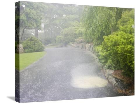 Evaporation Series - Rain Stage (Image 1 of 3)--Stretched Canvas Print