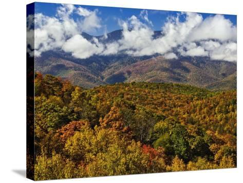 Autumn View of the Southern Appalachian Mountains from the Blue Ridge Parkway, North Carolina, USA-Adam Jones-Stretched Canvas Print
