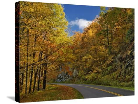 Blue Ridge Parkway Curving Through Autumn Colors Near Grandfather Mountain, North Carolina, USA-Adam Jones-Stretched Canvas Print