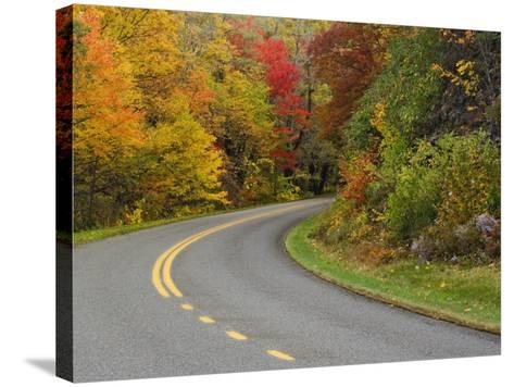 Blue Ridge Parkway Winding Through Autumn Colors, Pisgah National Forest, North Carolina, USA-Adam Jones-Stretched Canvas Print