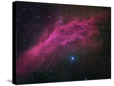 Ngc 1499, the California Nebula-Robert Gendler-Stretched Canvas Print