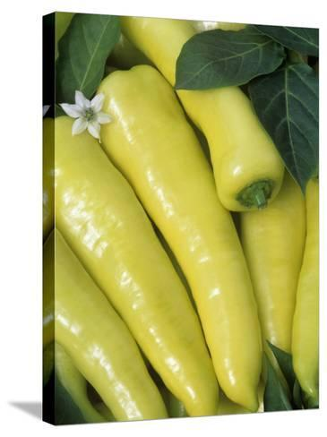 sweet Banana' Sweet Peppers (Capsicum Annuum)-Wally Eberhart-Stretched Canvas Print