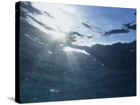 Rays of Sunlight Beneath the Water Surface-David Wrobel-Stretched Canvas Print