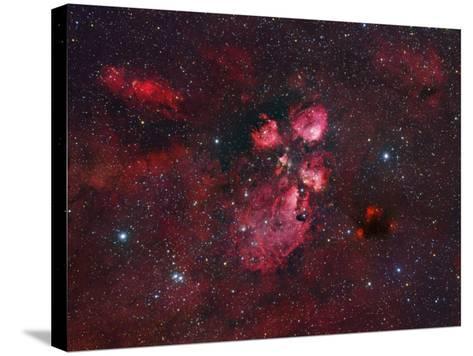 Ngc 6334, the Cat Paw Nebula-Robert Gendler-Stretched Canvas Print