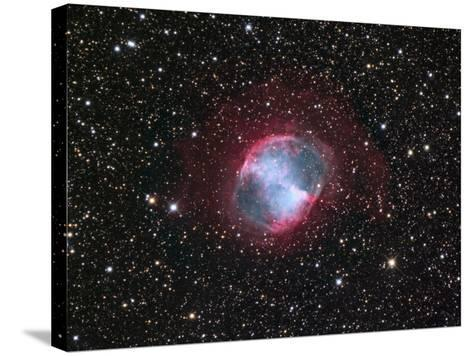 M27, the Dumbbell Nebula in Vulpecula-Robert Gendler-Stretched Canvas Print