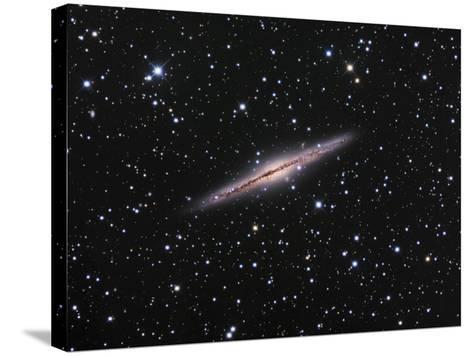 Edge-On View of the Ngc 891 Spiral Galaxy in Andromeda-Robert Gendler-Stretched Canvas Print