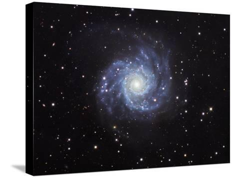 M74, Spiral Galaxy in Pisces-Robert Gendler-Stretched Canvas Print