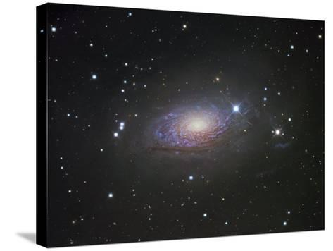 M63, Spiral Galaxy in Canes Venatici-Robert Gendler-Stretched Canvas Print
