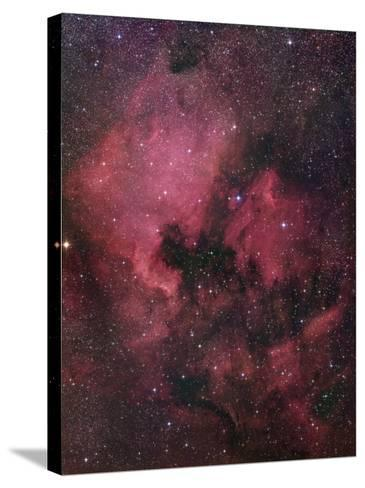 Ngc 7000, the North American Nebula in Cygnus-Robert Gendler-Stretched Canvas Print