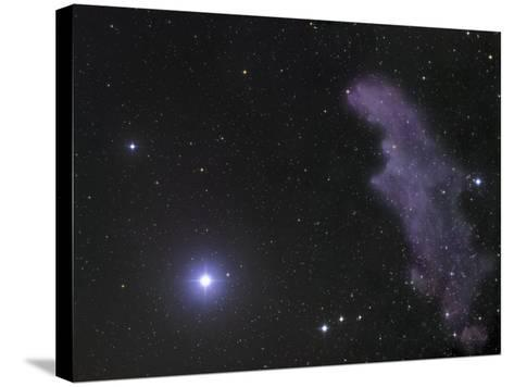 The Star Rigel and Ic2118 in Eridanus-Robert Gendler-Stretched Canvas Print