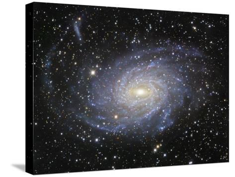 Ngc 6744 Spiral Galaxy in Pavo-Robert Gendler-Stretched Canvas Print