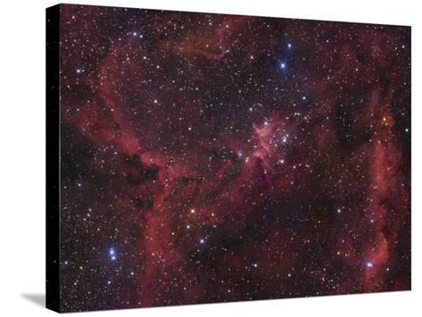 The Region of Nebula Ic1805-Robert Gendler-Stretched Canvas Print