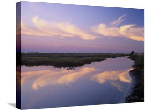 Sunrise, Merritt Island National Wildlife Refuge, Florida, USA-Adam Jones-Stretched Canvas Print