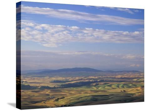 Rolling Hills of Palouse Farm Country, Eastern Washington, USA-Adam Jones-Stretched Canvas Print